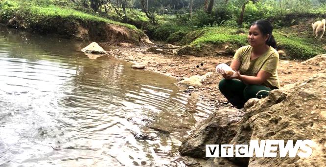 Kỳ bí suối nước trong vắt, cá lúc nhúc giữa rừng thẳm Sơn La-2