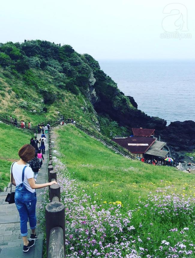 Hàn Quốc cấp visa 5 năm cho công dân Hà Nội, TP.HCM và Đà Nẵng-4