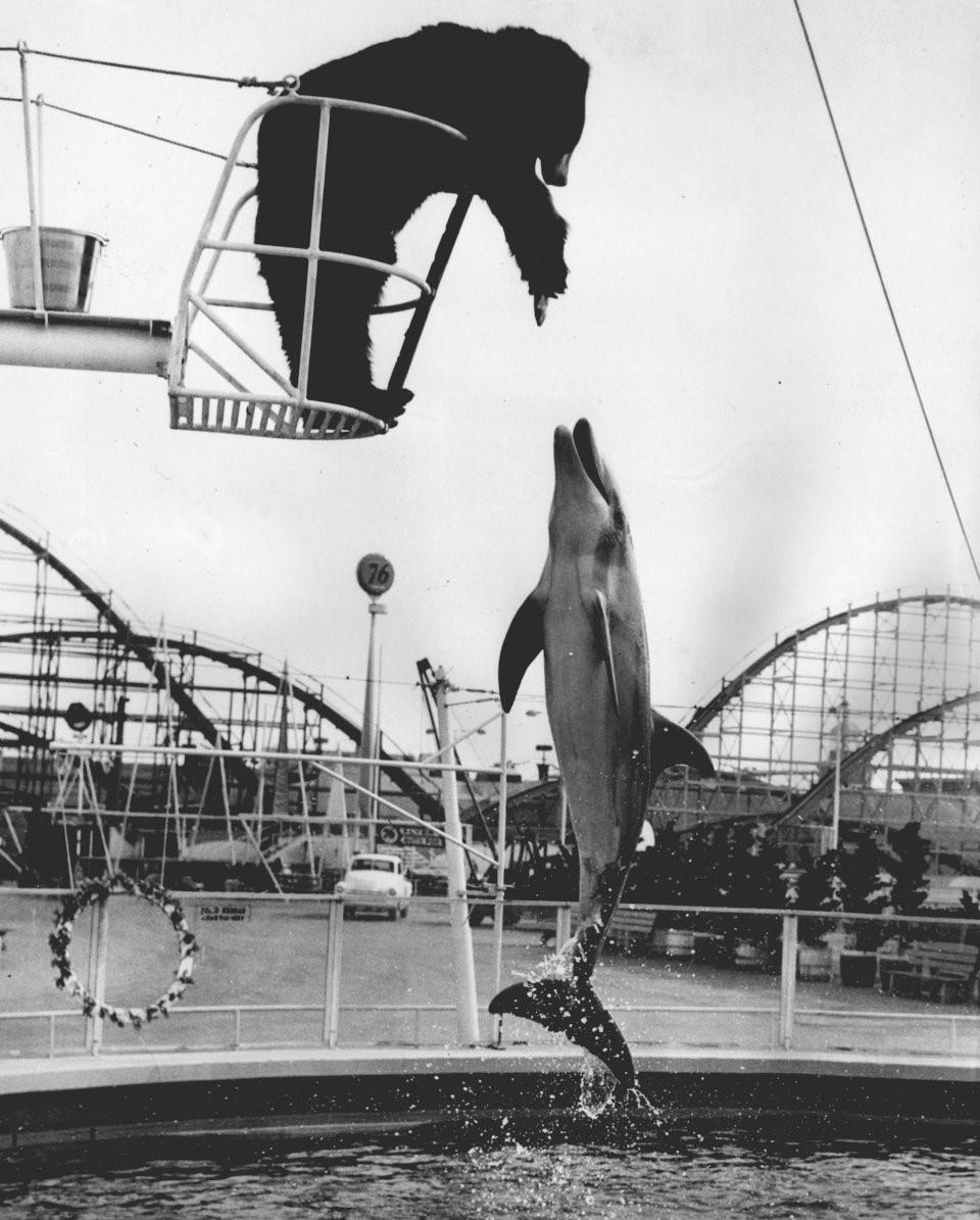 Hơn nửa thế kỷ trước, công viên giải trí khắp thế giới có trò vui nào?-10