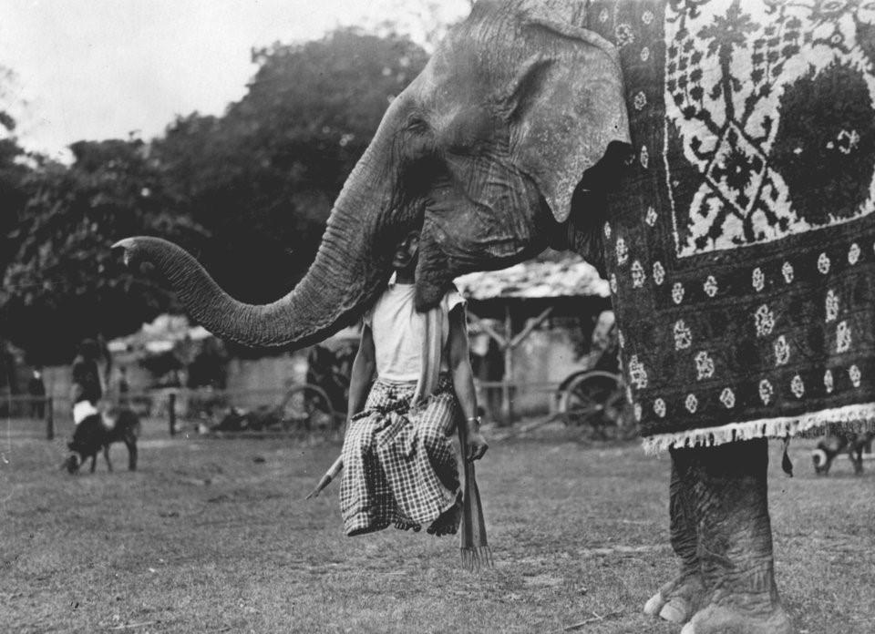 Hơn nửa thế kỷ trước, công viên giải trí khắp thế giới có trò vui nào?-9