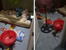 Vắng nhà 2 ngày, vợ trẻ bàng hoàng với kết quả chồng để nhà cửa như bãi rác với lý do