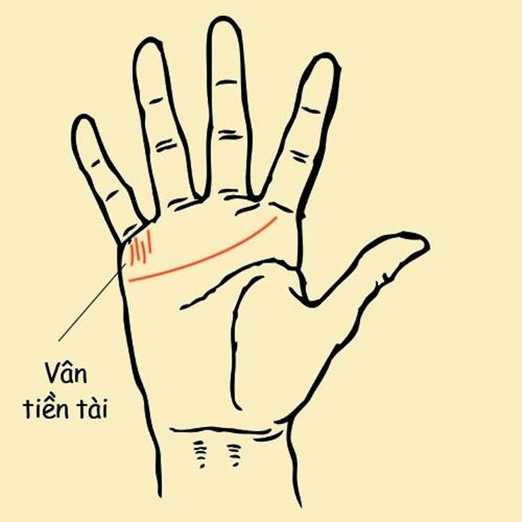 Phụ nữ có 6 đường chỉ tay này chắc chắn lấy chồng có gia sản bạc tỷ, suốt đời tắm trong biển tiền-1