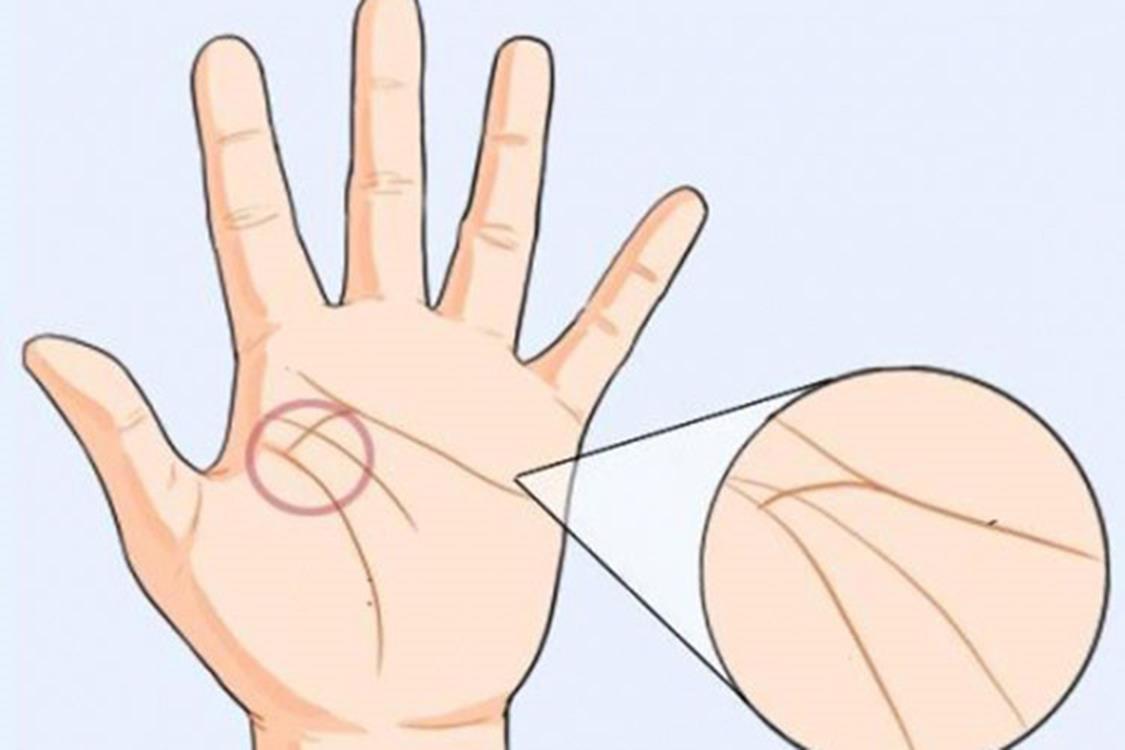 Phụ nữ có 6 đường chỉ tay này chắc chắn lấy chồng có gia sản bạc tỷ, suốt đời tắm trong biển tiền-5