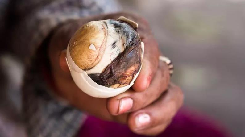 Thuỵ Điển thành lập bảo tàng: Những loại thức ăn kinh dị nhất thế giới, có tới 5 món quen ở Việt Nam được trưng bày-6