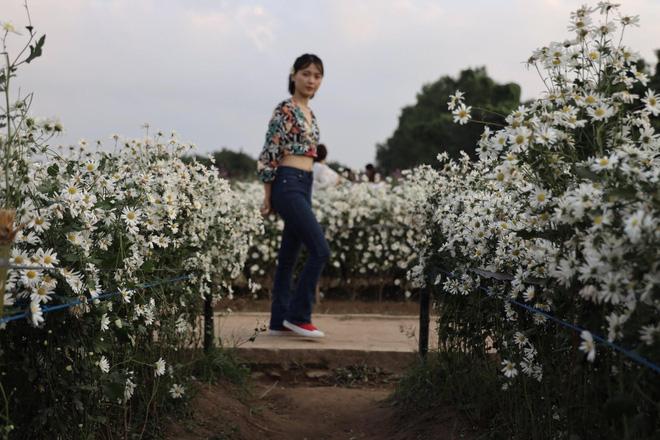 Từ Đà Nẵng ra Hà Nội chụp cúc họa mi, cô gái bàng hoàng khi nhận sản phẩm từ nhiếp ảnh và sự thật khiến tất cả ngã ngửa-6
