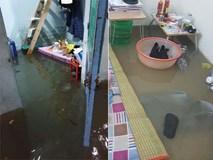 Sinh viên mếu máo nhìn nhà trọ chìm trong biển nước sau trận ngập nghiêm trọng chưa từng có tại Đà Nẵng