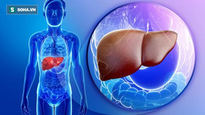 3 mốc vàng để chăm sóc gan khỏe mạnh nhất: Người ít mắc bệnh thường tuân thủ điều này-1