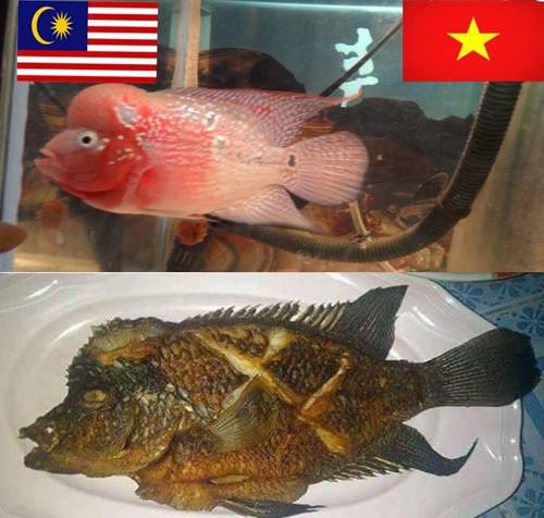 Ảnh chế các nhà tiên tri hài hước trước giờ bóng lăn trận chung kết lượt đi Việt Nam - Malaysia gây sốt-5