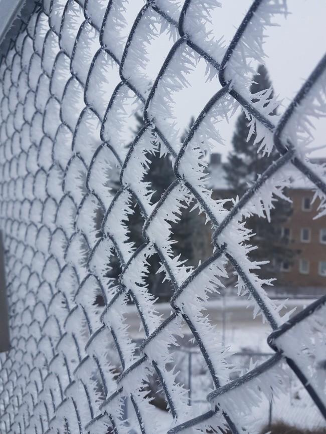 Chùm ảnh rét muôn nơi: Chỉ nhìn thôi đã khiến bạn run cầm cập vì cái giá lạnh tưởng như cả thế giới đóng băng-4