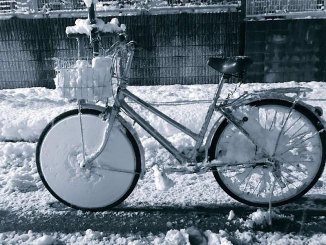 Chùm ảnh rét muôn nơi: Chỉ nhìn thôi đã khiến bạn run cầm cập vì cái giá lạnh tưởng như cả thế giới đóng băng-18