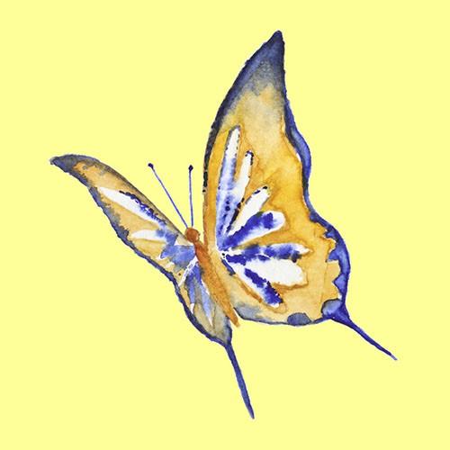 Chọn một con bướm thu hút mình nhất, đáp án sẽ giải mã nội tâm sâu thẳm trong bạn-6