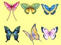 Chọn một con bướm thu hút mình nhất, đáp án sẽ giải mã nội tâm sâu thẳm trong bạn