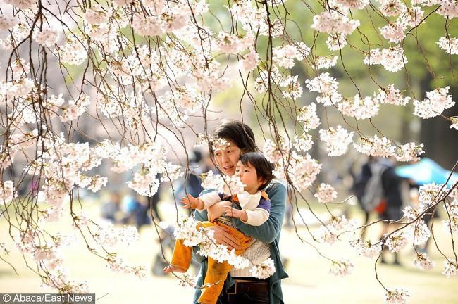 5 quy tắc nuôi dạy con của cha mẹ Nhật mà mọi phụ huynh nên học hỏi-1