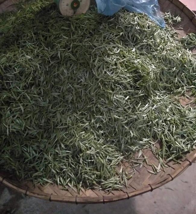 Loại trà chỉ có ở TQ, nay tìm thấy tại Việt Nam-16