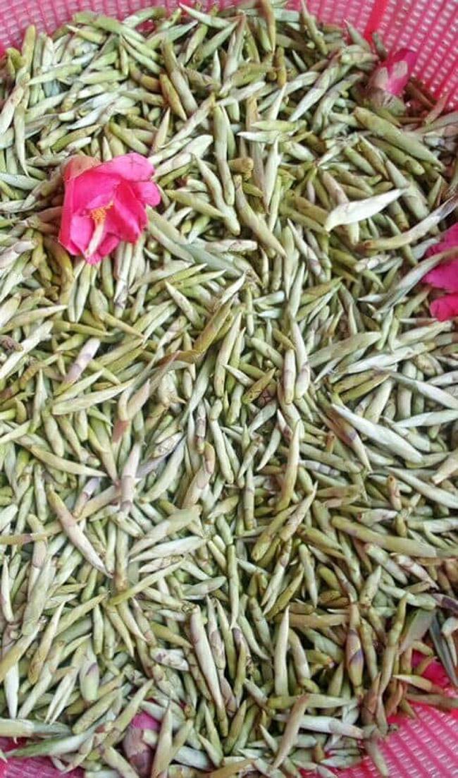 Loại trà chỉ có ở TQ, nay tìm thấy tại Việt Nam-17