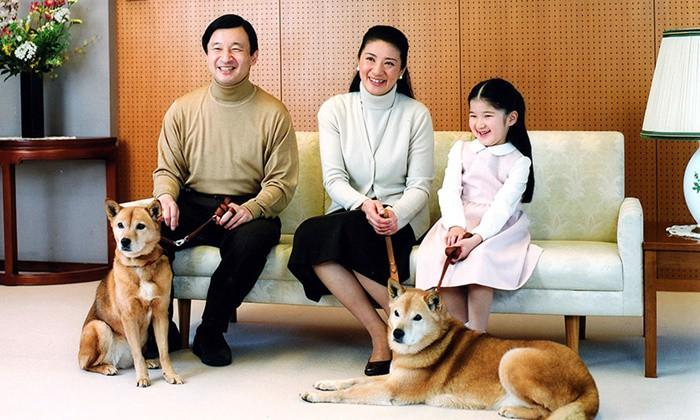Masako - Công nương xinh đẹp của Hoàng gia Nhật Bản: Nỗi sầu nhung lụa của con chim quý bị nhốt chặt trong lồng son-23