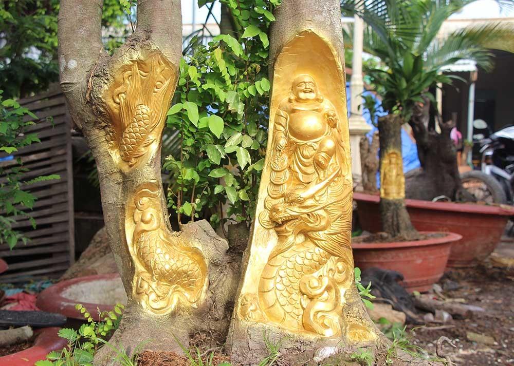 Chuyện lạ miền Tây: Quan Âm Bồ Tát cưỡi rồng vàng hiện hình trên cây khế-12