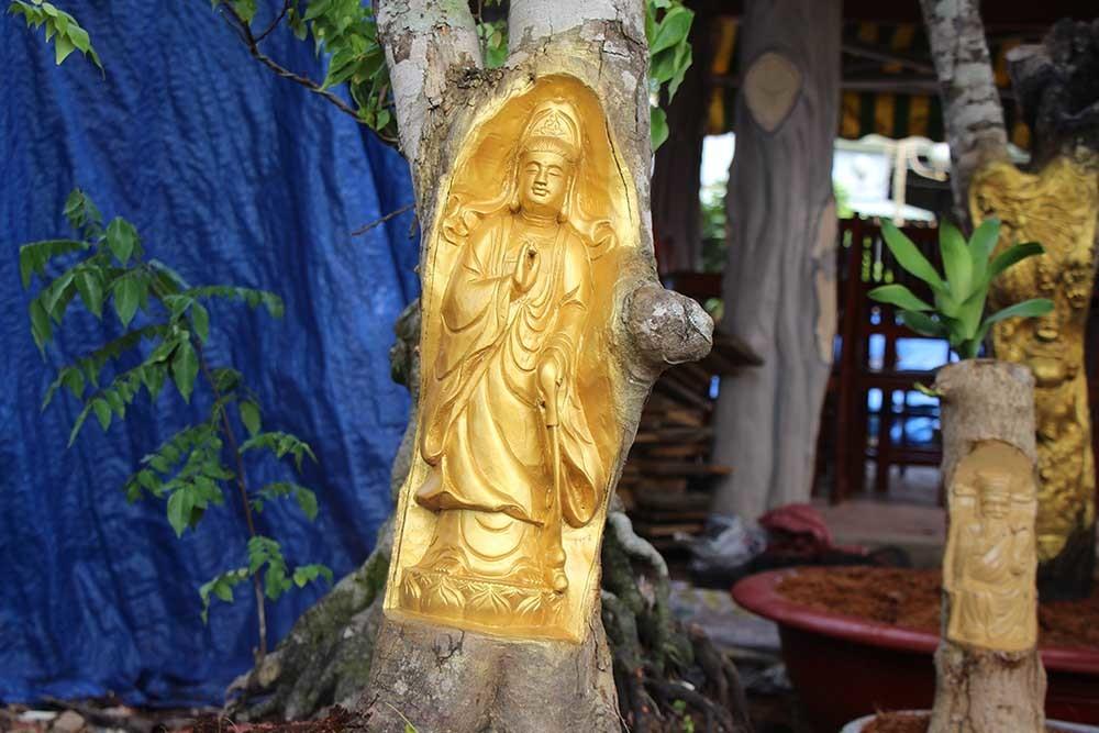 Chuyện lạ miền Tây: Quan Âm Bồ Tát cưỡi rồng vàng hiện hình trên cây khế-14