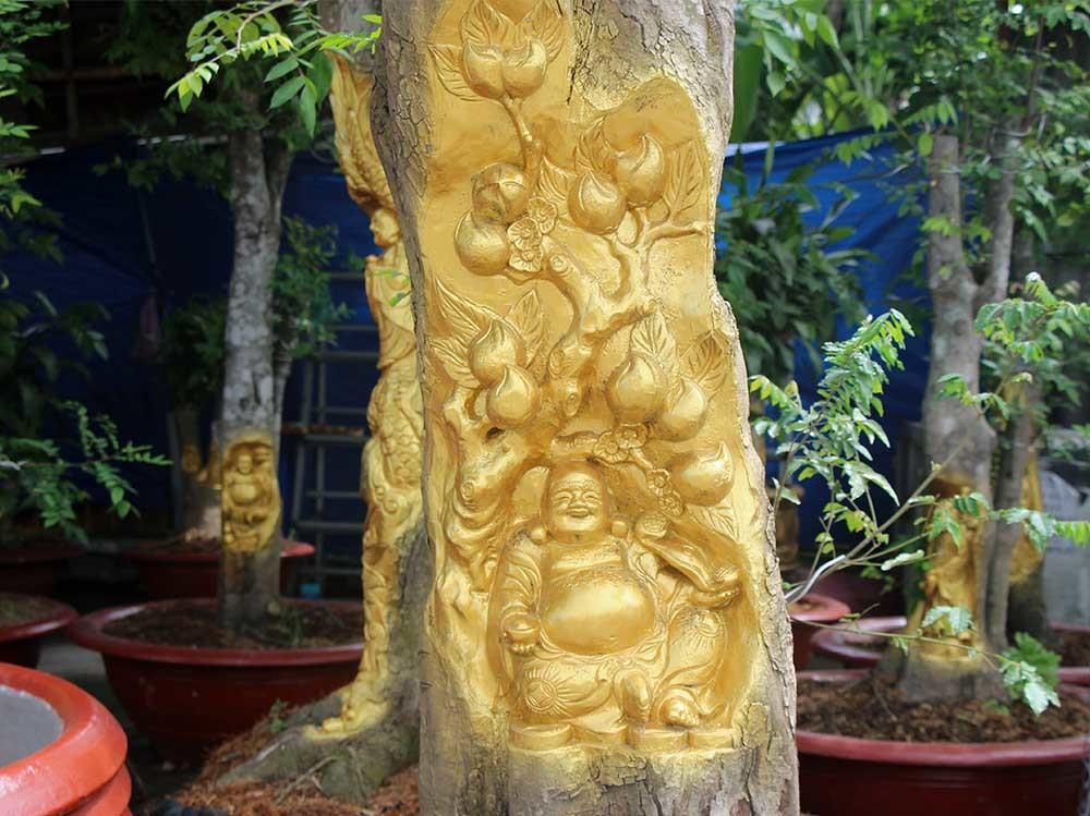 Chuyện lạ miền Tây: Quan Âm Bồ Tát cưỡi rồng vàng hiện hình trên cây khế-7