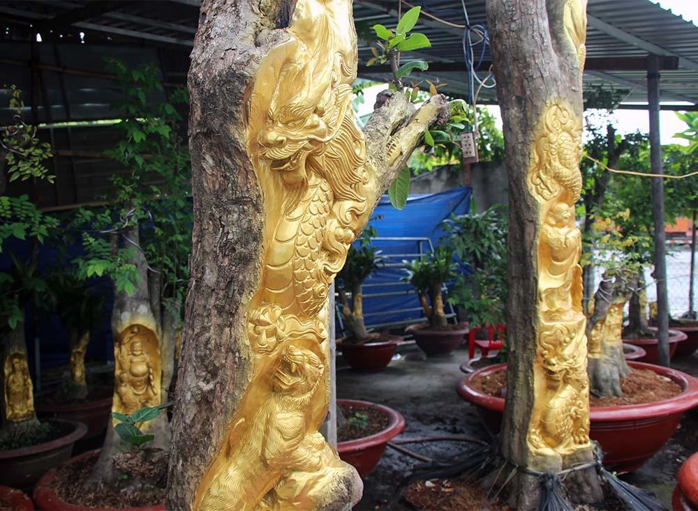 Chuyện lạ miền Tây: Quan Âm Bồ Tát cưỡi rồng vàng hiện hình trên cây khế-1