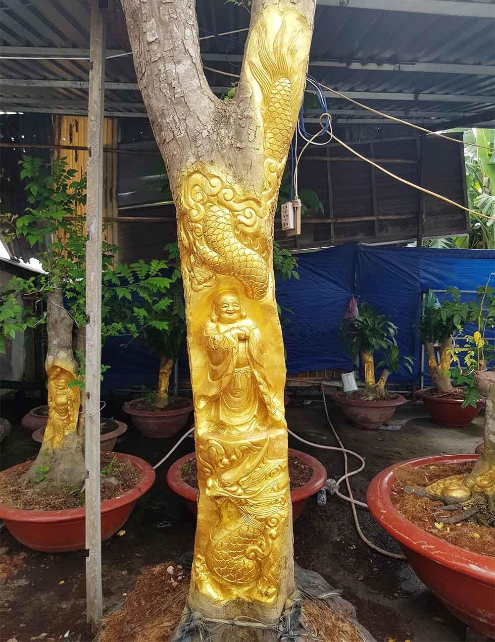 Chuyện lạ miền Tây: Quan Âm Bồ Tát cưỡi rồng vàng hiện hình trên cây khế-3