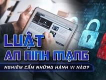 Vi phạm Luật An ninh mạng, người dùng có thể bị truy cứu trách nhiệm hình sự?