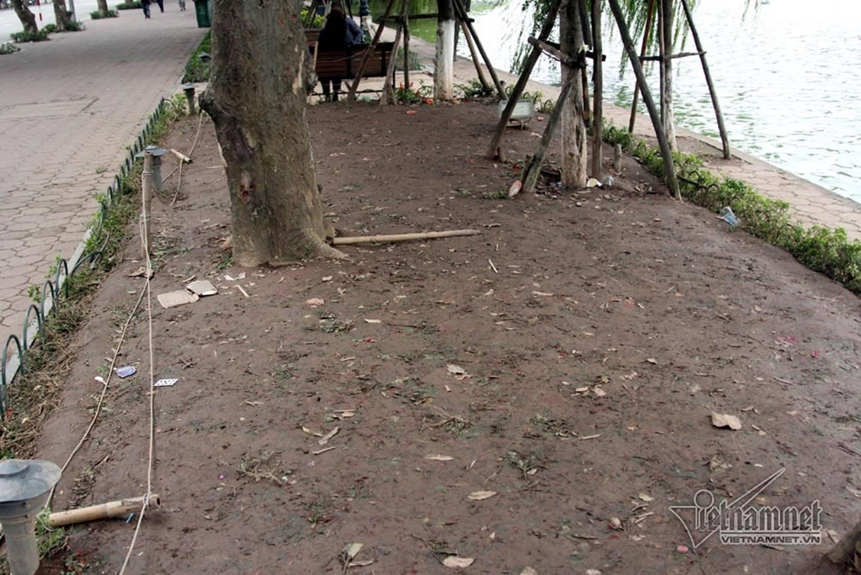 Sửng sốt vườn hoa hồ Gươm sáng nay bị san trụi sau giao thừa-16