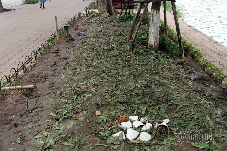Sửng sốt vườn hoa hồ Gươm sáng nay bị san trụi sau giao thừa-20