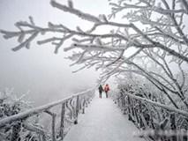 Du khách phấn khích trước cảnh tượng băng tuyết phủ trắng Trương Gia Giới