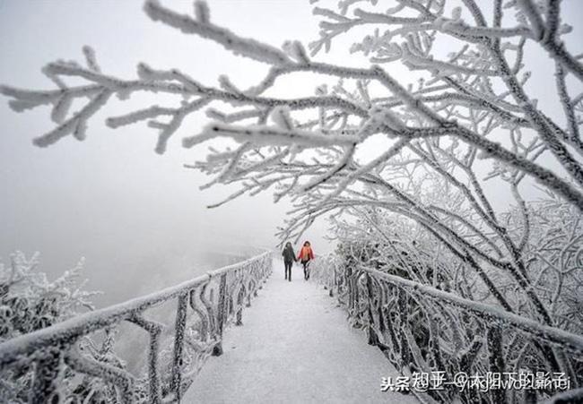 Du khách phấn khích trước cảnh tượng băng tuyết phủ trắng Trương Gia Giới-11