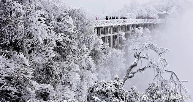 Du khách phấn khích trước cảnh tượng băng tuyết phủ trắng Trương Gia Giới-14