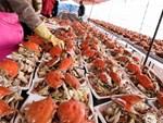 Bỏ 7 triệu đồng mua 1-2 con bào ngư, khách Việt vẫn chịu chi-2