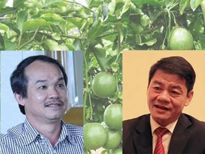 Chuyện về các tỉ phú đôla người Việt ngày đầu năm-1