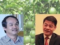 Chuyện về các tỉ phú đôla người Việt ngày đầu năm