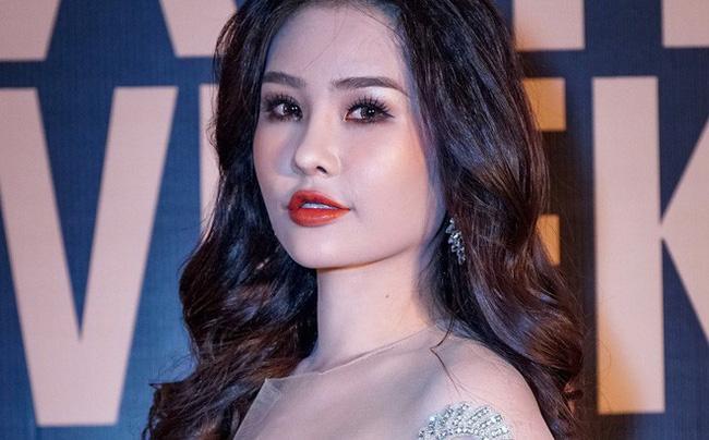 Dân mạng bất bình vì Lê Âu Ngân Anh kiện ngược Cục NTBD, kiên quyết dự thi Hoa hậu Liên lục địa-1