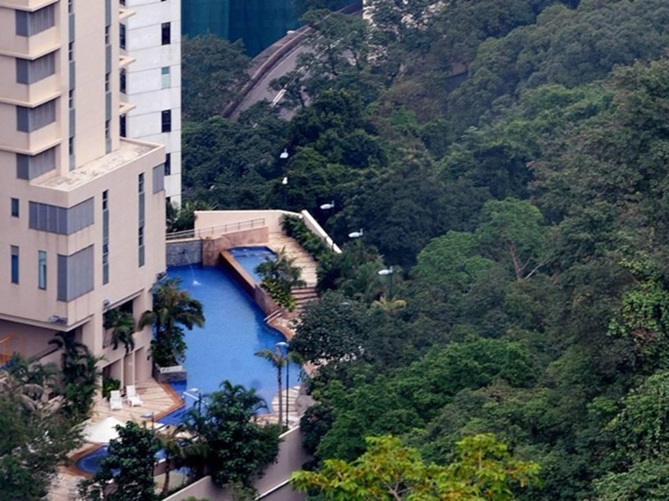 Tài sản chất đống, giới siêu giàu vung tiền ăn chơi ra sao ở Hong Kong hoa lệ?-7