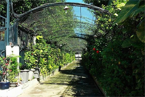 Biệt thự xa hoa như cung điện của các mỹ nhân Việt-14