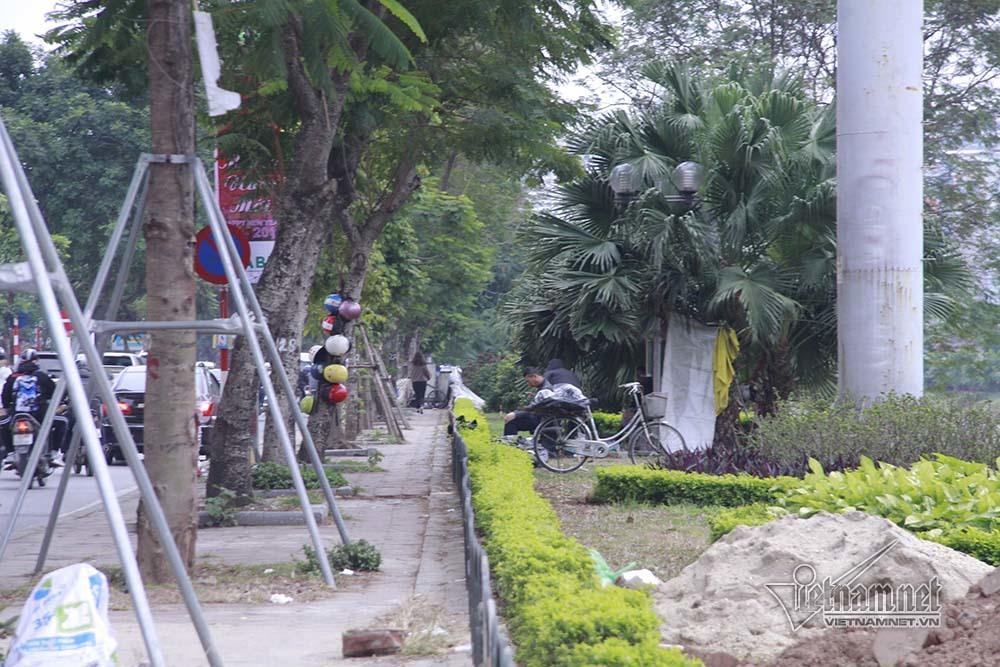 Hà Nội khai tử hàng cây đẹp nhất ven sông Tô Lịch-17