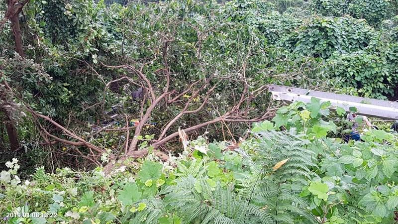 Xe khách rơi trên đèo Hải Vân, 23 người bị nạn-4