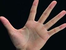 Bàn tay có những đặc điểm này đảm bảo giàu sang sẽ bủa vây, cả đời tiền tiêu không hết