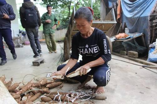 Đầu năm trồng sắn, cuối năm làm bánh đa, mỗi nhà thu nhập hàng chục triệu dịp Tết-1