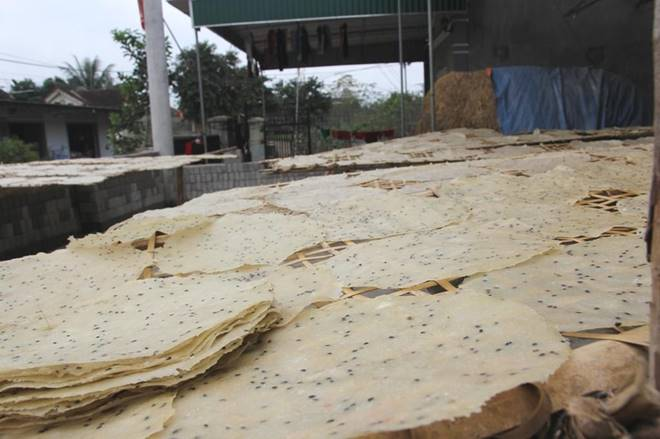 Đầu năm trồng sắn, cuối năm làm bánh đa, mỗi nhà thu nhập hàng chục triệu dịp Tết-5