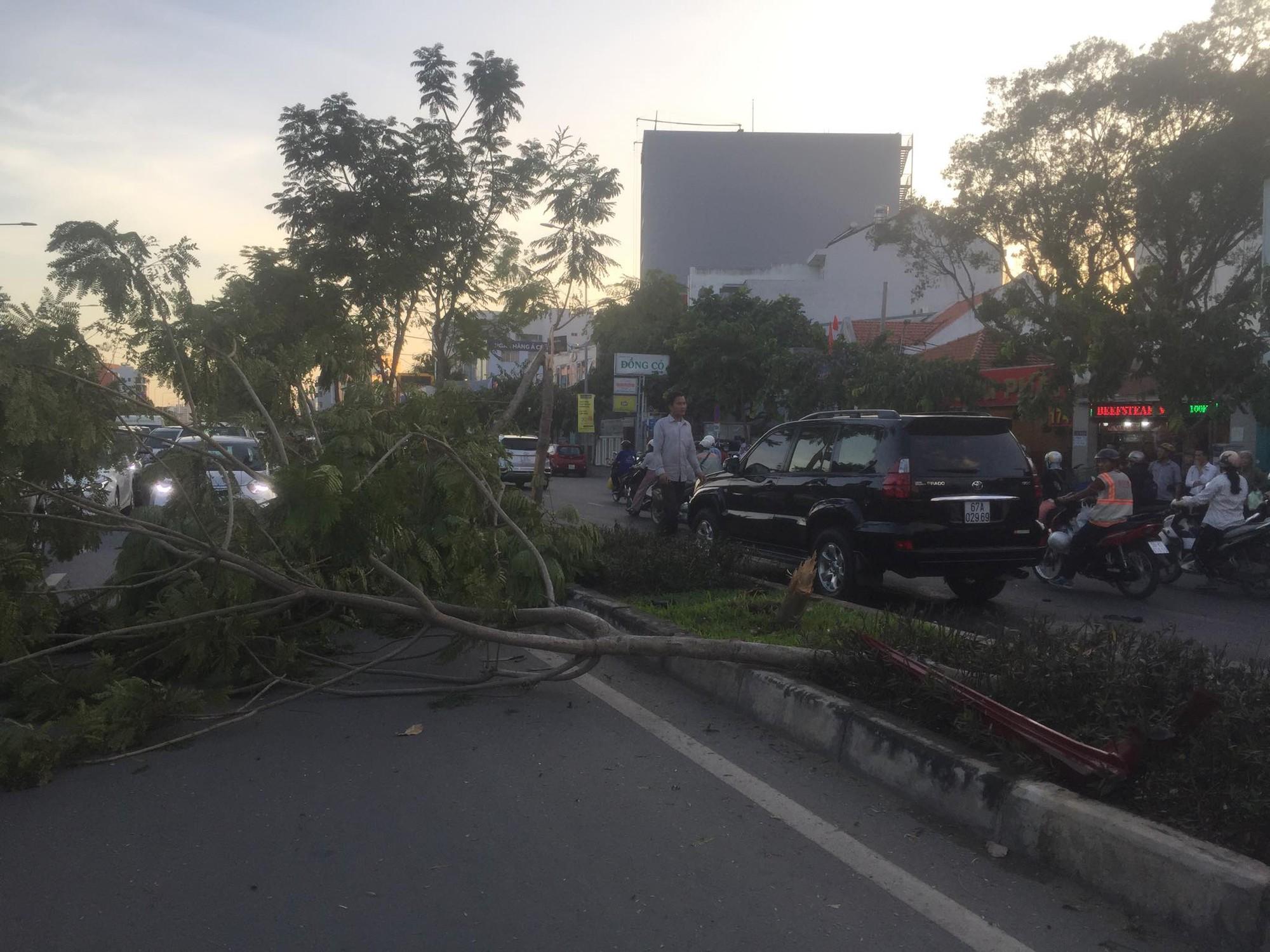 Ô tô BMW gây tai nạn liên hoàn trên đường phố Sài Gòn, những người trên xe rời khỏi hiện trường-1