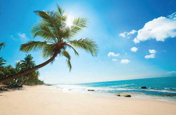 Resort 5 sao 'sang chảnh' của Best Westen Premier tại Phú Quốc-3