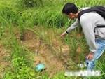 Diễn viên kiêm trùm trộm mộ và chuyện rợn người ở nghĩa địa tội nhân nổi tiếng Sài thành-4