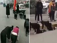 Công ty Trung Quốc phạt nữ nhân viên bò trên đường gây phẫn nộ