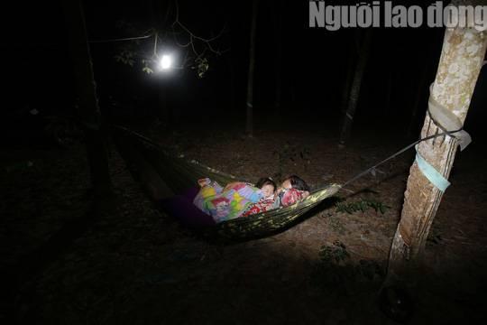 Cha mẹ chết dưới bánh xe container, con cái ra rừng, ra rẫy ngủ-5