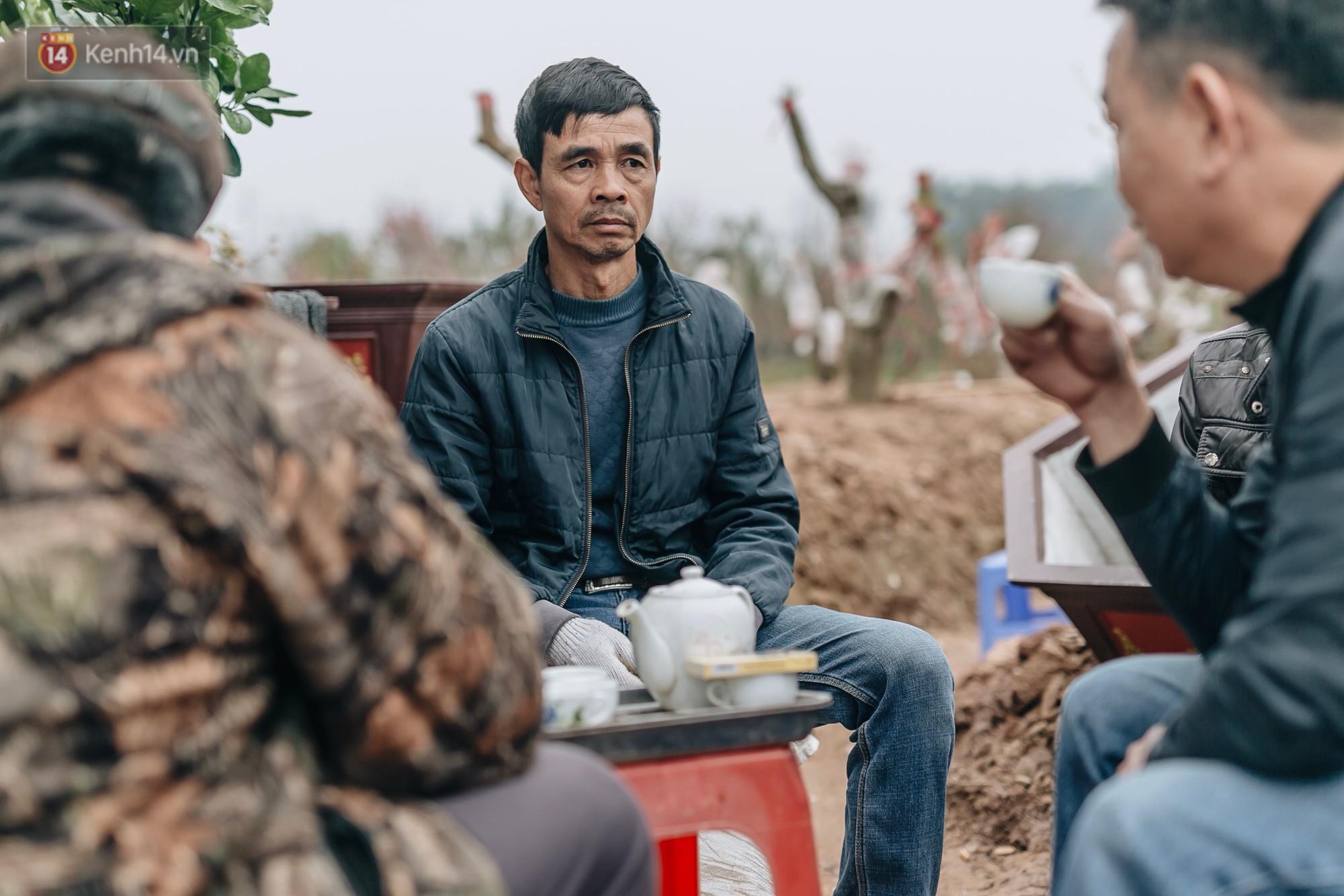 Gần 200 gốc đào của người dân Bắc Ninh bị chặt phá trong đêm: Tết năm nay còn chả có bánh chưng mà ăn-12