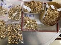 Nhân viên lén lút trộm 430 lượng vàng: Gia đình trước đây rất nghèo bỗng xây nhà, sắm xe?