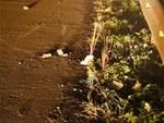 Tai nạn 8 người chết: Tài xế xe tải trình diện, có dấu hiệu dùng ma túy-2